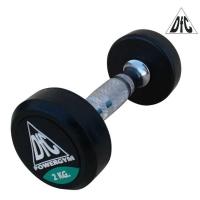Гантель PowerGym DB002-2 2kg x2 DFC