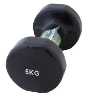Гантель Винил 5kg x1 AD055 ATEMI