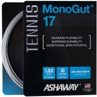 Струна для тенниса Ashaway 12m MonoGut 17 Silver A12004