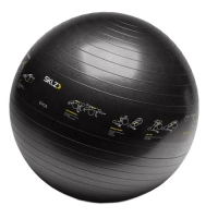 Мяч гимнастический 65cm Trainerball APD-TB-SPT-04 SKLZ