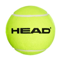 Сувенир Head Tennis Autograph Ball 589001