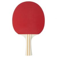 Ракетка для настольного тенниса Stiga Evolve WRB 1* 1211-8318-01