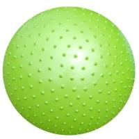 Мяч гимнастический 55cm Массажный AGB0255 ATEMI