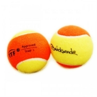 Мячи для тенниса Quicksand Ball IBTF Polybag x60
