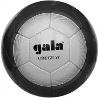Мяч для футбола Gala ARGENTINA 2011 BF5003S