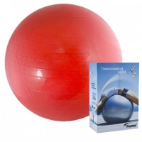 Мяч гимнастический 45cm r324045 PALMON