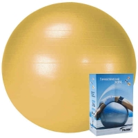 Мяч гимнастический 55cm r324055 PALMON