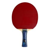 Ракетка для настольного тенниса Donic Testra Light 200201