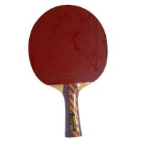 Ракетка для настольного тенниса Donic Testra AR 200202