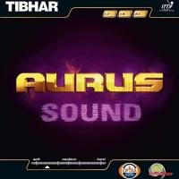Накладка для настольного тенниса Tibhar Aurus Sound