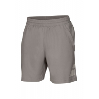 Шорты Babolat Shorts Perfomance Men 2016 Grey